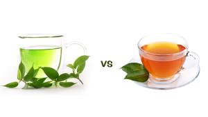 Primary Differences between Darjeeling Green Tea & Black Tea
